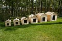 doghouses.jpg